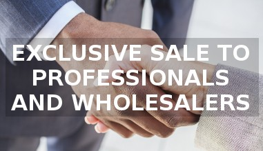 EXCLUSIVE SALE TO PROFESSIONALS AND WHOLESALERS